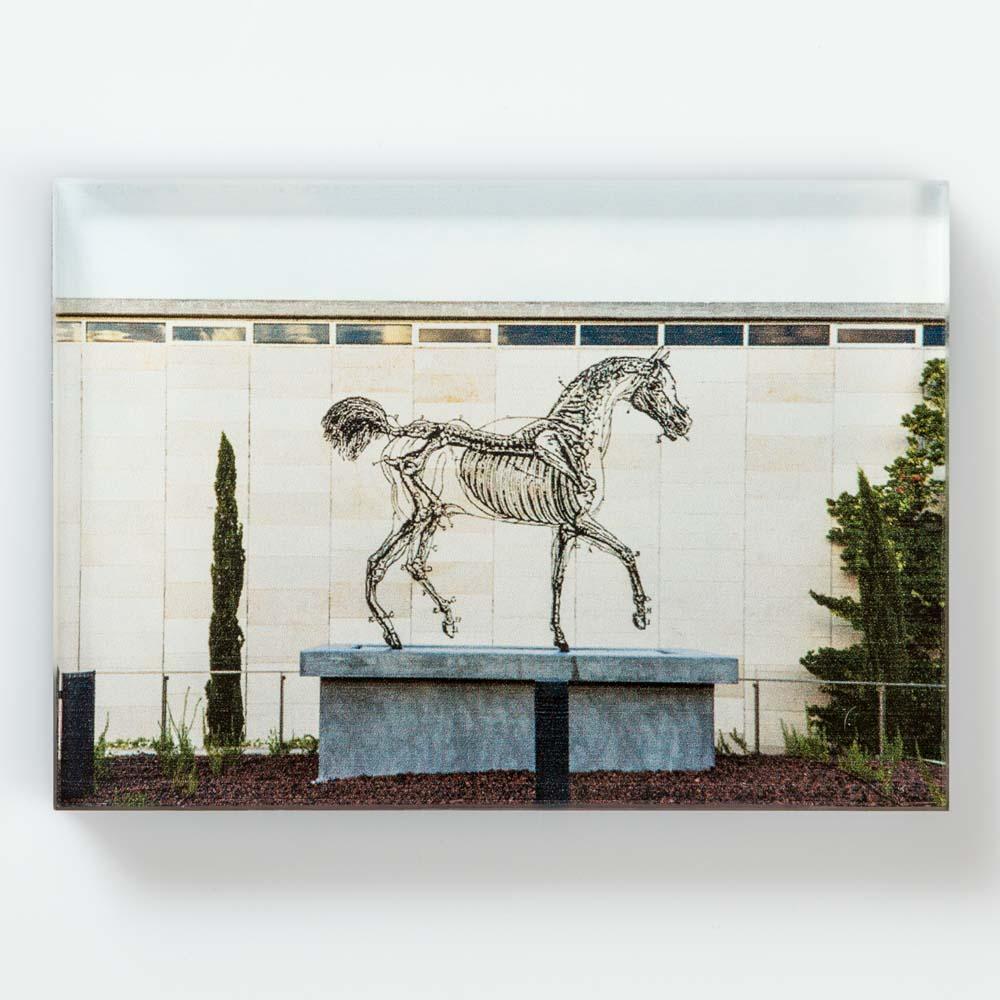 Magnet, Zadok Ben-David, Horse Power