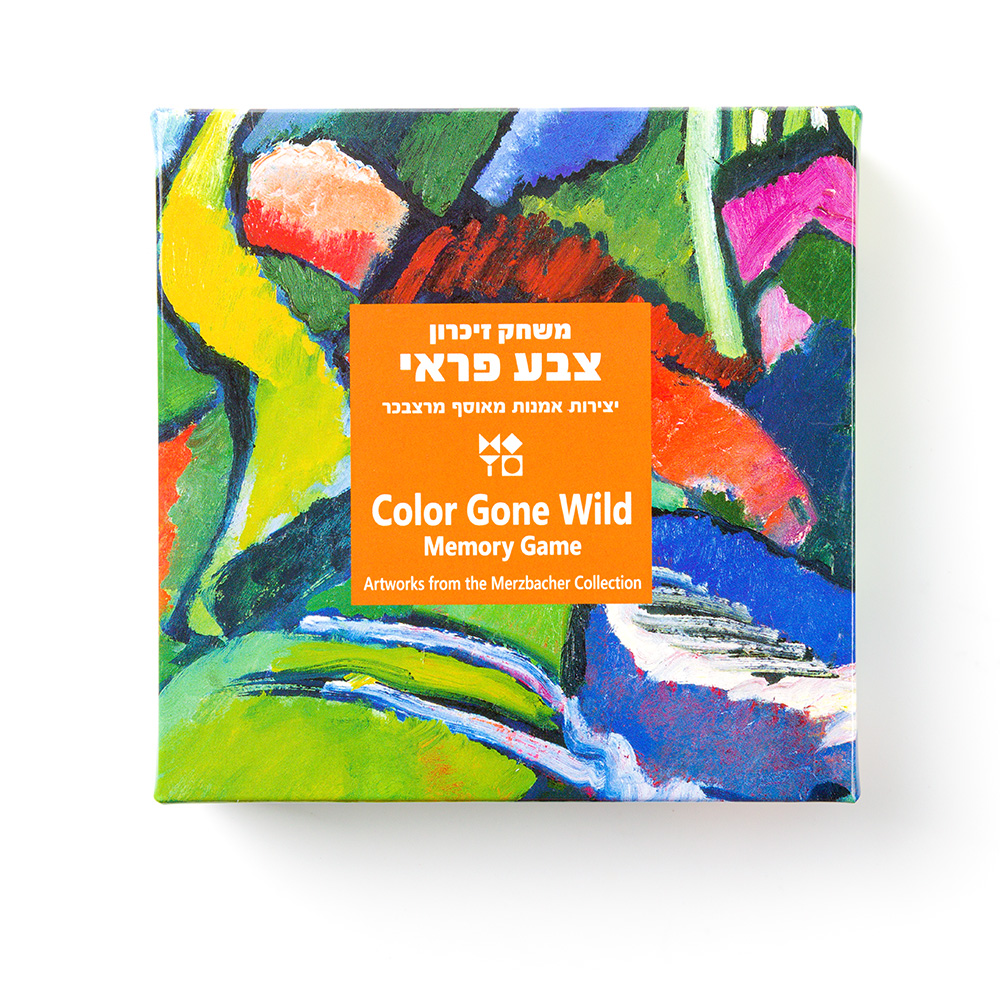 Color Gone Wild Memory Game